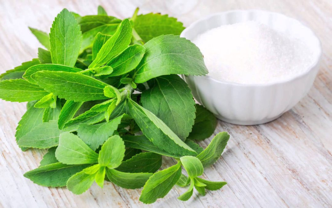Learn how Stevia works