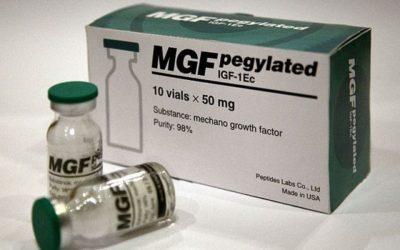 MGF – Mechano Growth Factor